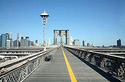 NYC BrooklynB1