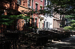 NYC Brooklyn Houses